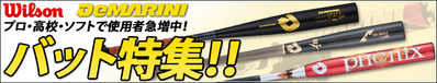 13-1-wilson-bat