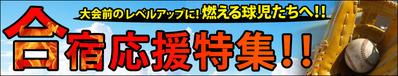 13-5-gasyuku2013