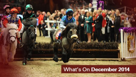 What's on December
