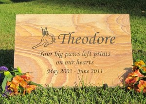 Large Tennessee Golden Flagstone (12″ x 18″ x 1″)