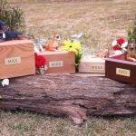 Hardwood Pet Urns