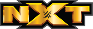 WWE NXT 6th November (2014) HD 480P 200MB Download