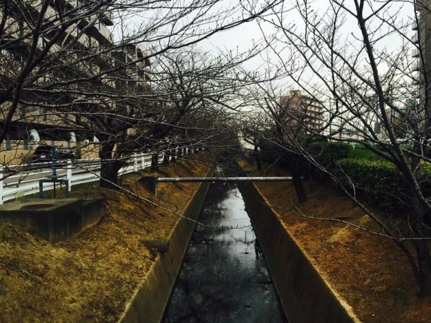 中井筋自転車道 安城市