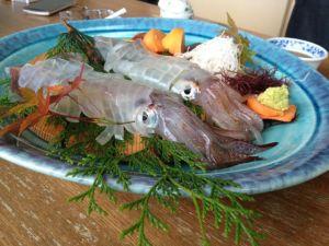 イカの活け造り | 呼子 漁火