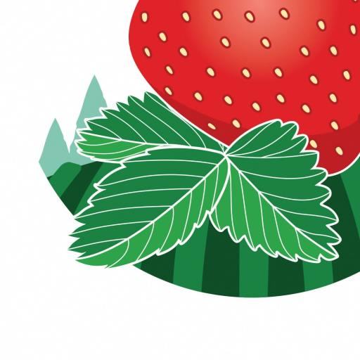 Strawberry Hills 3 4LOOP Website 02