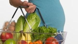 نظام غذائي للحامل شهر بشهر