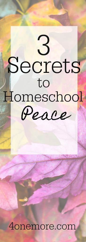 Feeling overwhelmed?  Check out these 3 Secrets to Homeschool Peace #homeschool  @4onemore.com