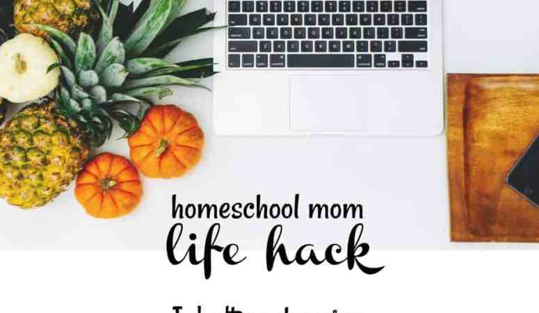 I don't go shopping (and you shouldn't either) :: Homeschool Mom Life Hack