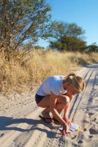 Central Kalahari Game Reserve - Spoorzoeken