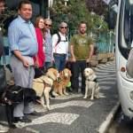 O pessoal em frente ao hotel com os cães, aparece parte da frente do ônibus que nos levou ao evento