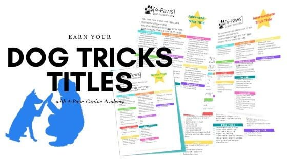 earn your dog tricks titles with 4-Paws Canine Academy