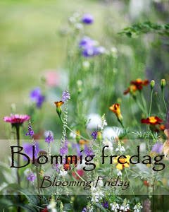 1-blommig-fredag