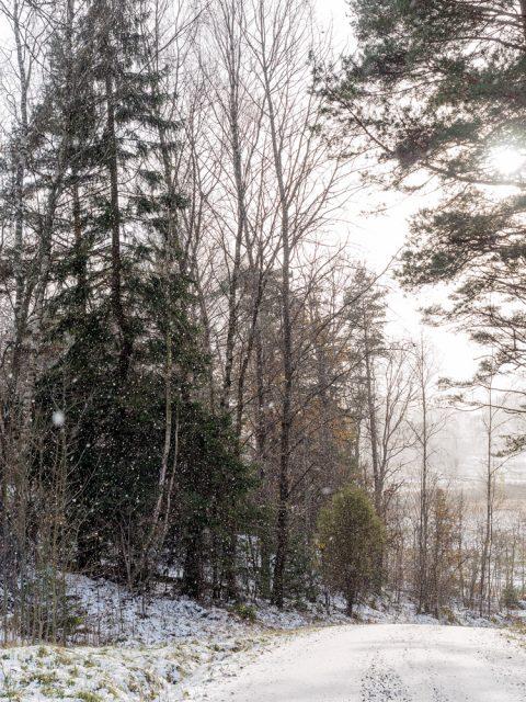 Snön faller tidigt