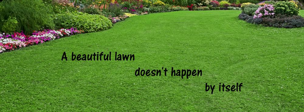 A Beautiful Lawn Doesnt Happen By Itself 4Seasons