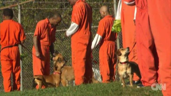Shelter dogs and prison inmates are paired for bonding exercises Source: CNN