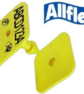 Allflex NLIS Pig