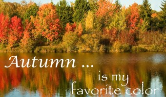Autumn Is My Favorite Color!