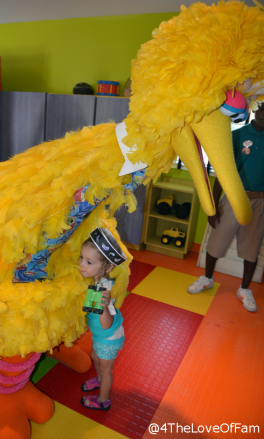 We bird watched with Big Bird at Beaches Resorts ~ Sesame Street