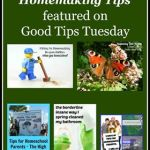 Homeschooling & Homemaking Tips
