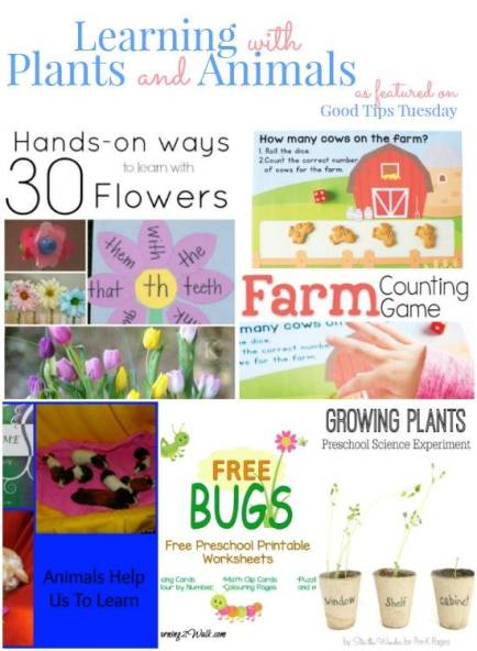 Learning With Plants and Animals