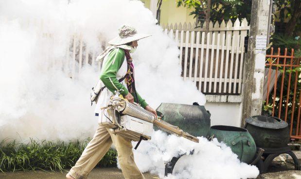 En tiempos de Covid-19 es crucial prevenir el dengue
