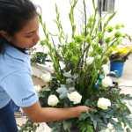 Lucía Alemán: la artista de las flores que quiere ser un cactus
