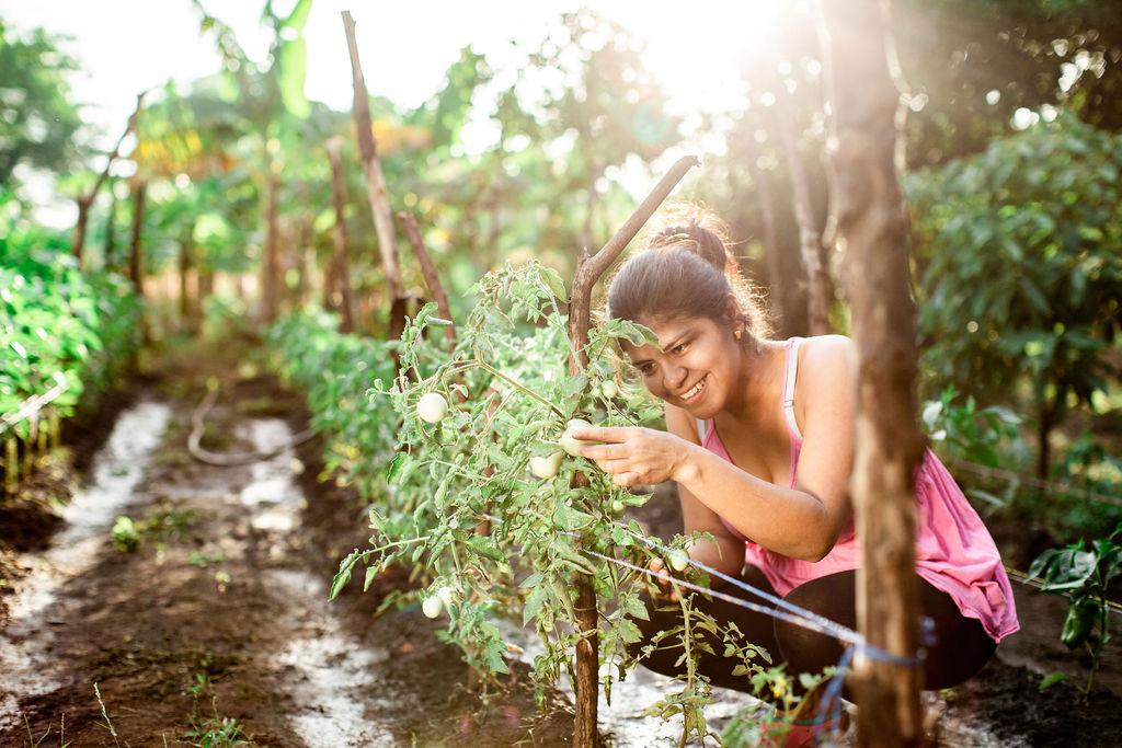 Programa Nutriendo el Futuro busca reducir el hambre en comunidades pobres