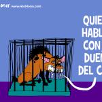 ¿Ortega busca diálogo?