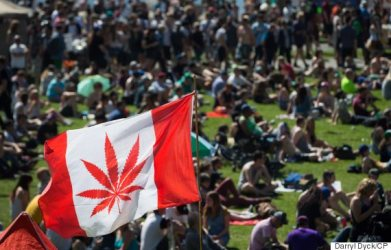 A marijuana flag flaps in the wind above the crowd at the annual 4/20 cannabis culture celebration at Sunset Beach in Vancouver, B.C., on Wednesday April 20, 2016. THE CANADIAN PRESS/Darryl Dyck