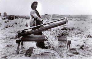 old_hemp_farmer