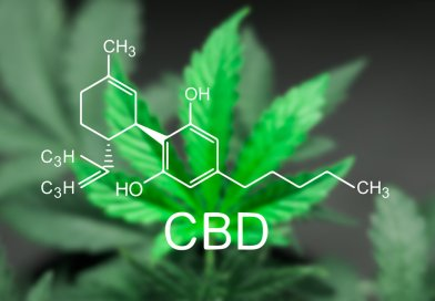 A Budding Industry: CBD Statistics & Trends (Infographic)