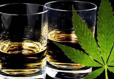 20 Marijuana vs. Alcohol Statistics