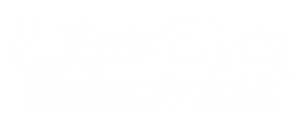 UpGo logo white png