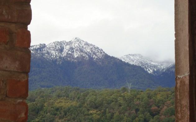 Tancítaro es además famoso por su paisaje boscoso, que domina el pico del mismo nombre, la cumbre más elevada de Michoacán (Foto: internet)