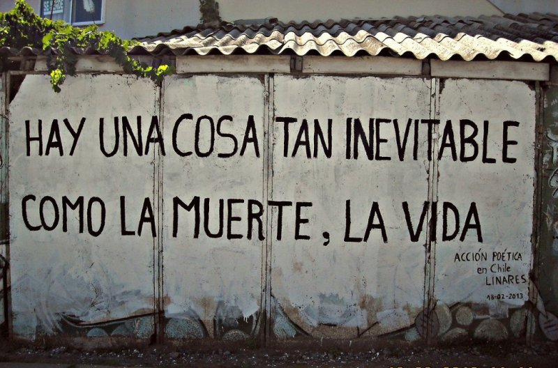 accion_poetica_cultura_inquieta18