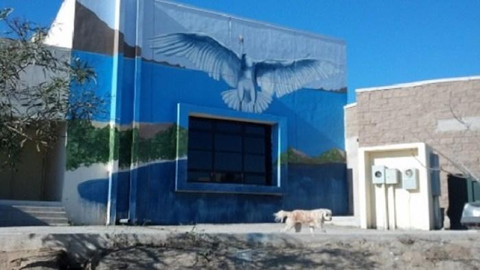 mural-gaviota-cearte-2