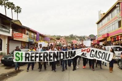 15 ENE referendum