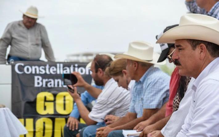 Inician persecución de Estado contra Rigoberto Campos por oponerse a Constellation Brands