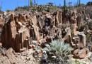 Registran en El Rosario 16 sitios con cientos de antiguos petrograbados