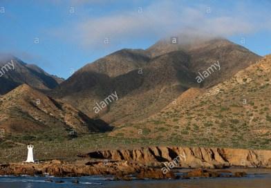 Isla de Cedros cambia la perspectiva sobre cómo se pobló el continente