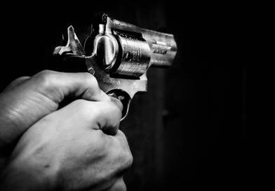 PLUMA DE NEÓFITO: La Violenta Baja California