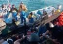 Cristaliza una desgracia anunciada en el conflicto Sea Shepherd vs pescadores de SF