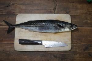 """""""Po prostu zarzucasz i masz rybę"""" jak powiedział sprzedawca w sklepie wędkarskim. Łowienie makreli, dorszy czy czarniaków z brzegu to dla Norwegów nie wędkarstwo."""
