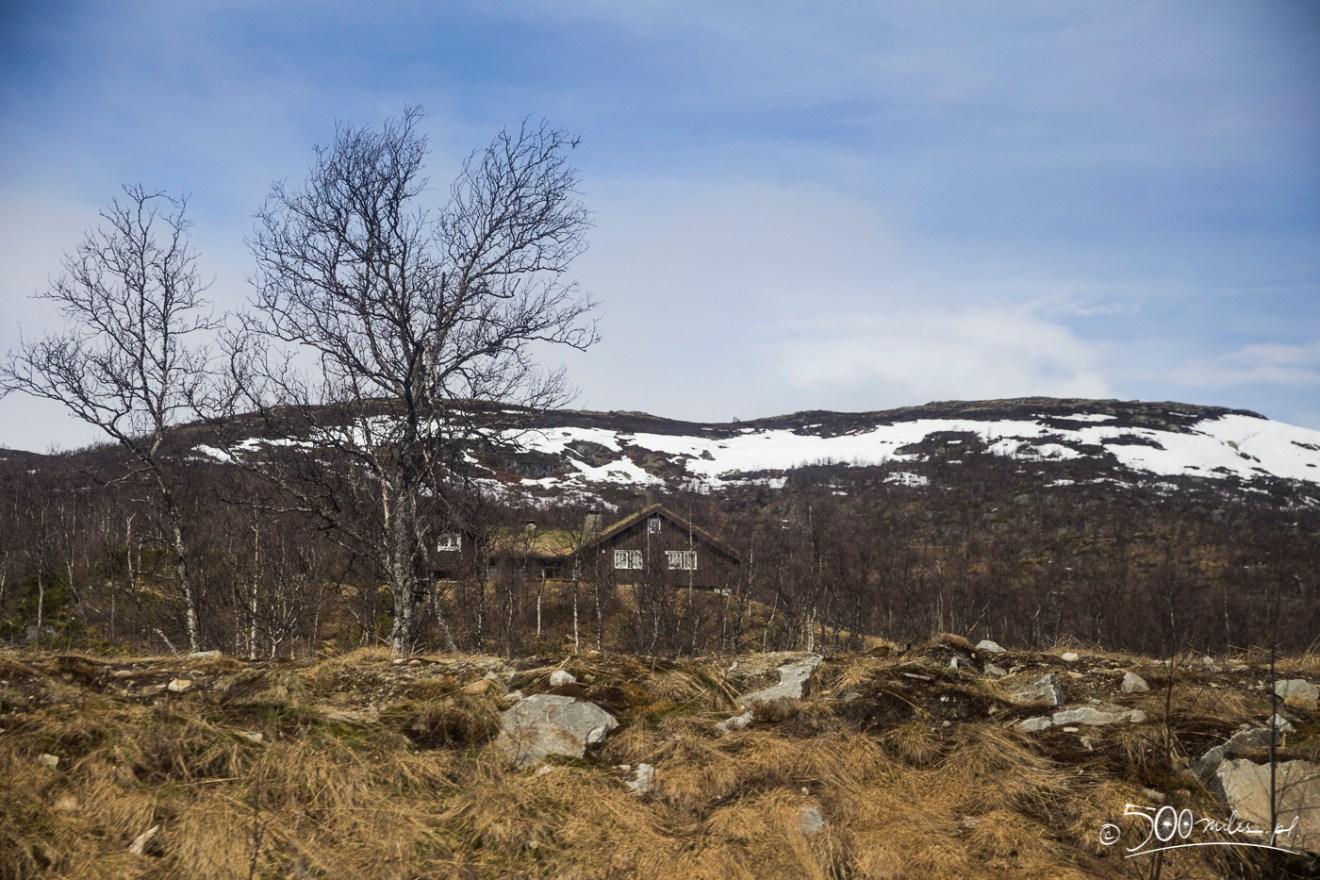 Oslo-Bergen train ride view