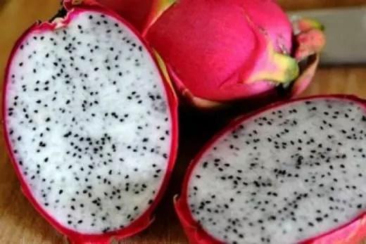 A fruta, também conhecida como pitaya, é originária de climas quentes