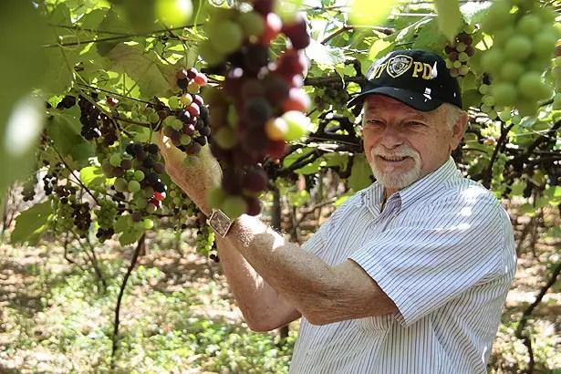 Djair da Silva, 76 anos, plantas suas próprias frutas e legumes em seu sítio