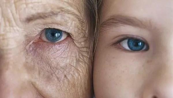 Um mecanismo molecular em células da pele que pode estar por trás deste processo