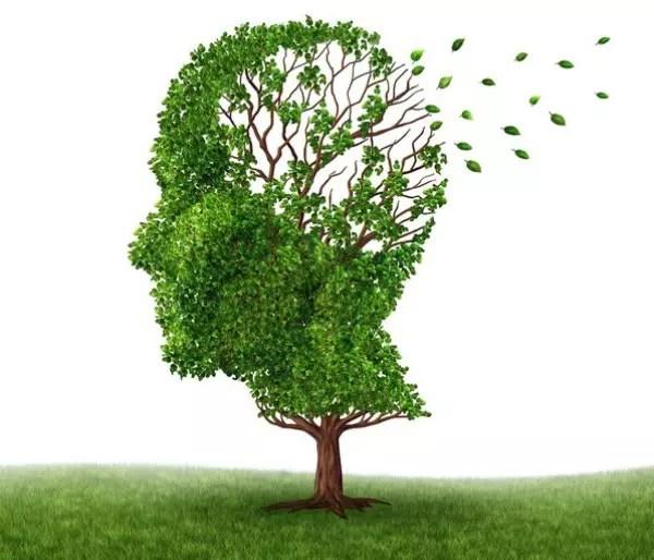Alzheimer não destrói memórias específicas, mas as torna inacessíveis