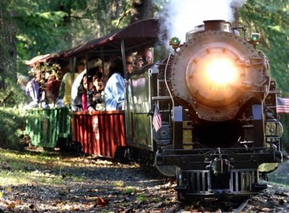 Trains you can ride: Train Town Train