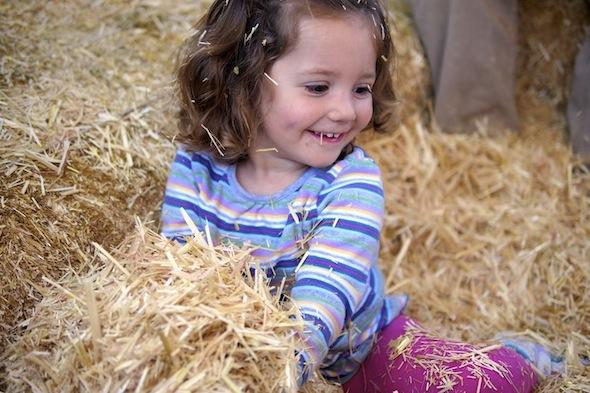 Lemos Farm Hay Ride